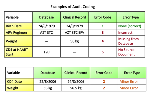 Audit Coding Examples